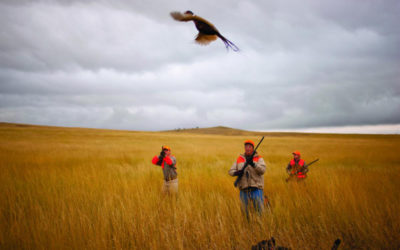 Hunting and Outdoor Business in demand in North Dakota